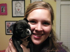 Danielle with a Tiny Dolly! (krisjaus) Tags: dogs puppy bostonterrier puppies buddy smalldogs newpuppy bostonterriers babydogs krisjaus danielleeberhart