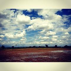 @tafmonnnn บอกว่าเมฆแบบนี้เหมือนในการ์ตูนดราก้อนบอล .. ฉันตะโกนเรียกเมฆสีทอง ไม่มีเสียงตอบกลับมา ..