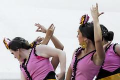 Flamenco dance (Hernan Piera) Tags: art photography photo dance hands women foto photographer dancers arte image escenario danza pic manos scene charts andalucia fotografia mujeres malaga baile flamenco imagen tablas marbella fotografo dancingwomen bailarinas mujeresbailando hernanpiera