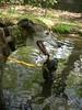 arboretum2010030
