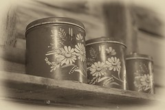 Canisters (repete7 (I'm really back this time)) Tags: sepia canon vintage tin virginia nik canon50mmf18 canister canisters niftyfifty paintedflowers mcdonaldsmill niksilverefex canont1i tincanister exposureroanoke niksilverefexpro2