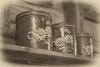 Canisters (repete7) Tags: sepia canon vintage tin virginia nik canon50mmf18 canister canisters niftyfifty paintedflowers mcdonaldsmill niksilverefex canont1i tincanister exposureroanoke niksilverefexpro2