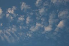 KL5C0756 (Dale Tibor) Tags: blue sky clouds bottle lightning lib lightninginabottle