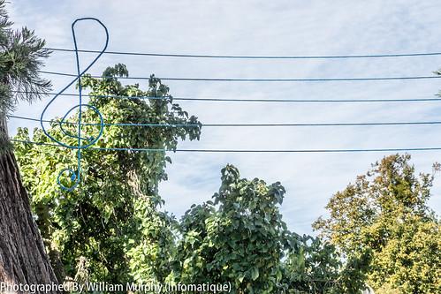 Bird Song By Claire Halpin & Madeleine Hellier - Sculpture In Context 2013 In The Botanic Gardens