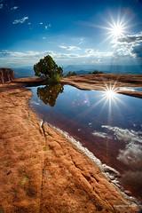 _X2A4711_HDR.jpg (aryanphotography) Tags: sky reflections landscape outdoors utah nationalpark perspective scenic canyonlandsnationalpark sunburst hdr anthonyrryan