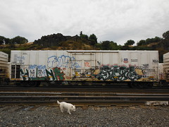 HIENA - JIGL (2ONE5-1981 (S.O.B.A.)) Tags: art oregon train bench graffiti northwest graf tags spraypaint boxcar bombs westcoast steaks railroadtracks throwup handstyles americansteel hobomonikers