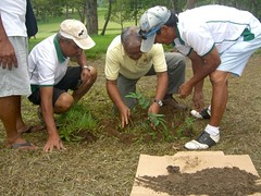 "Tree Planting • <a style=""font-size:0.8em;"" href=""http://www.flickr.com/photos/69054197@N03/10648512714/"" target=""_blank"">View on Flickr</a>"