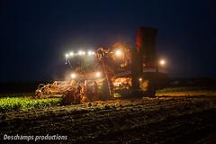 Grimme Rexor 620 (Deschamps productions) Tags: night harvest sugar beet nuit harvester 620 betteraves rexor grimme rcolte selfpropelled intgrale arrachage arracheuse