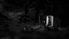Miniature Witches (Fotograf aus Passion.) Tags: door light white black alex nature canon dark eos licht miniature witch natur haus spot 7d alexander 60mm makro tür schwarz dunkel weg miniatur weis hexen alpha4 harbich