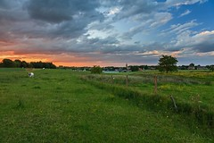 A typical quiet sunset (lathuy) Tags: sunset sun clouds dark de grey soleil countryside belgium belgique champs coucher dramatic fields nuages campagne brabantwallon jodoigne lathuy