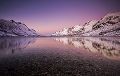 Warm Winter Light (Tracey Whitefoot) Tags: winter light water norway reflections warm january fjord tracey tromso 2014 whitefoot ersfjordbotn