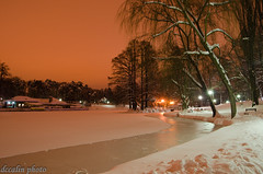 Frozen Lake (dccalin05) Tags: park lake snow landscape frozen nikon romania craiova outstandingromanianphotographers ringexcellence dblringexcellence tplringexcellence eltringexcellence romanescuparc