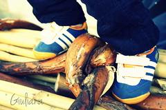Piccoli farchiaioli crescono ( Giuliana *) Tags: italy baby canon photography shoes child bimbo tradition fotografia scarpe abruzzo tradizioni tradizione farchie canoneos450d farchia giuliana