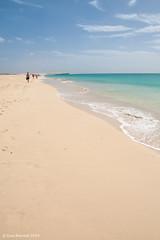 IMG_2677 (K_D_B 2.6 Million views. Thanks) Tags: ocean beach canon sand waves atlantic caboverde 30d boavista capeverde kdb sigma1770f28dcosmacro riutouareg