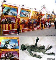 Chupacabra, 60 inch, as seen at the nation-wide traveling circus sideshow, MUSEUM OF WORLD ODDITIES, (Dr. Takeshi Yamada..) Tags: ny newyork celebrity art fashion monster japan brooklyn painting coneyisland star tv artist dragon dinosaur manhattan famous georgebush ghost great gothic science taxidermy charlesdarwin entertainment cnn freak horror dna takeshi oddities mermaid salvadordali benjaminfranklin billclinton billgates mythology renaissance curiosities ronaldreagan sideshow apparition specimen jackalope globalwarming waltdisney cabinetofcuriosities steampunk yamada damienhirst cryptozoology alberteinstein barackobama rushlimbaugh stevenspielberg leonardodavinci fijimermaid realityshow cryptid michaelbloomberg seanhannity seara joebiden immortalized michaelsavage takeshiyamada museumofworldwonders roguetaxidermy searabbit lauraingraham marklevin climategate minnesotaassociationofroguetaxidermists  pablopiacasso
