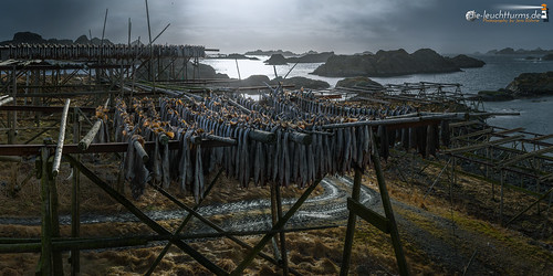 Drying flakes for Stockfish #1