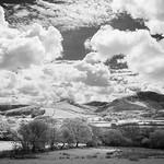 Lakeland infrared