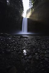 Starkness (stokes rx) Tags: oregon northwest waterfalls oregonwaterfalls abiqua