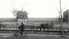 stanbul (*Tue*) Tags: city blackandwhite bw tree bike wall flickr child istanbul
