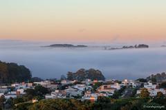 Neblina em Londrina (ricardoyamazaki) Tags: sky orange fog canon paisagem neblina londrina efs55250mmf456isii