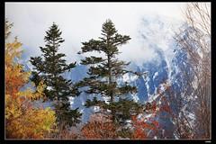 nEO_IMG_IMG_8396 (c0466art) Tags: trip travel autumn trees light mountain lake snow cold beautiful japan canon landscape photo scenery colorful tour place dam visit popular  5d2 c0466art