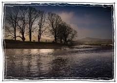 River Ure (jumpandwave) Tags: winter sky dog man canon river yorkshire hills dales pennines ure jumpandwave