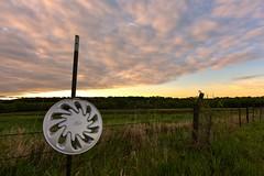 Incongruity Sunrise (thefisch1) Tags: pink blue sunset sky ford grass sunrise fence silver nikon round mm hubcap fenceline oogle incongruity nikkkor 1424 prairier
