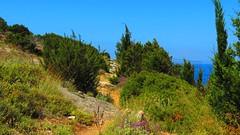 IMG_9822 (mygreecetravelblog) Tags: mountains landscape island outdoor hills greece grecia mountainside greekislands cyclades syros kini siros kinibay syrosgreece kinibaysyros
