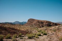 5R6K2874 (ATeshima) Tags: arizona nature havasu