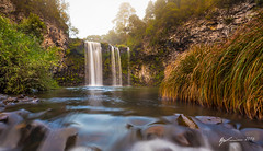Dangar Falls (R. Francis) Tags: fog sunrise river waterfall nsw newsouthwales dorrigo dangarfalls ryanfrancis ryanfrancisphotography bieldsownriver