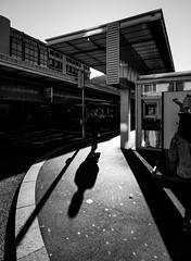 _DSC4406-zw (durr-architect) Tags: light building bus station architecture modern facade office natural outdoor central bank mario translucent material lugano botta gottardo ransila
