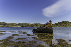 Marooned (David C Laurie) Tags: rot abandoned water boat decay shipwreck hull sunken sunk wodden