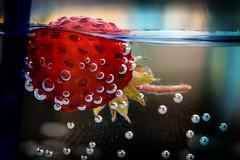 Floating Strawberry (Alex M. Wolf) Tags: macro water swimming swim canon strawberry wasser schwimmen bubbles erdbeere blasen luftblasen ef100mm eos5dmkiii alexmwolf