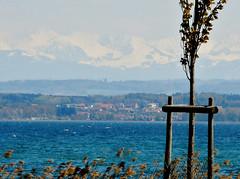 Lake Neuchatel, Switzerland (SnapDoc) Tags: switzerland lakes lacdeneuchatel lakeneuchatel