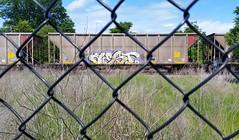 AEST (BLACK VOMIT) Tags: car train graffiti ol south dirty mc dos coal d30 mayhem freight wh aest aest2 coalie mcult mayhemcru