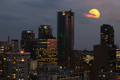 Strawberry Moon of June on Summer Solstice (Katrin Ray) Tags: sky moon toronto ontario canada june clouds canon eos rebel glow fullmoon solstice moonrise 2016 strawberrymoon moonrising canonphotography 750d dreamscapesoftoronto katrinray t6i summersolstice2016 strawberrymoonofjuneonsummersolstice