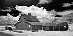 the Mundt place - Infrared (eDDie_TK) Tags: rural ir colorado farming barns co infrared farms redbarns rurallife ruralliving larimercounty bouldercounty larimercountyco bouldercountyco