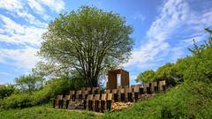 Have a seat and enjoy the landscape cinema. (Akito-X) Tags: blue cinema tree green nature de bayern deutschland bavaria kino natur grn blau baum canonefs1022mmf3545usm canoneos7dmarkii pilsach