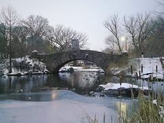 Winters Calendar (lozadae12) Tags: park newyorkcity bridge winter snow newyork pond centralpark manhattan gapstowbridge vsco