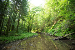 0V5A2427 (Connor Wyckoff) Tags: camping red river hiking kentucky backpacking gorge osprey
