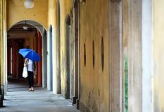 Modena (stefyBuff) Tags: umbrella via modena azzurro ombrello carteria