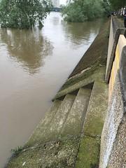 Crue (photogreuhphies) Tags: seine flood crue alfortville