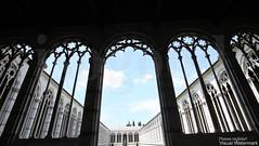 20160629_pisa_camposanto_5555z (isogood) Tags: italy church grave cemetary religion gothic christian pisa monastery tuscany renaissance necropolis barroco camposanto