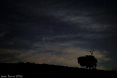 The visit of aunt Cassiopeia (The Whisperer of the Shadows) Tags: sky tree night clouds dark stars landscape geotagged arbol 50mm noche countryside paisaje astrophotography cielo nubes astrofotografa estrellas constelacion campo constellation ciudadreal nocturno oscuro cassiopeia casiopea landscapesfromlamancha gassetreservoir