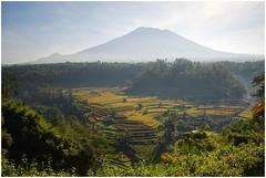 agungDSC_9029 (Yande Ardana) Tags: bali volcano agung