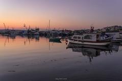 Evening songs (oskaybatur) Tags: travel sunset sea summer sky june turkey landscape trkiye manzara gnbatm yansma 2016 turkei silivri sigma1770 trakya justpentax pentaxart pentaxkr oskaybatur