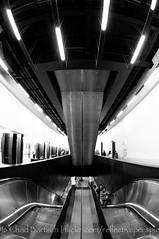 DSC_4524 (reflective perspicacity) Tags: uk england urban bw london thames towerbridge londonbridge europe modernart europeanvacation escalator stpauls eu parliament bigben millenniumbridge tatemodern fisheye britishmuseum nikond300