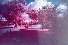 FPP Color Infrared 15-Month Film Test (Michael Raso - Film Photography Podcast) Tags: ultrawideslim infraredfilm colorinfraredphotography fppinfrachromecolorinfraredfilm