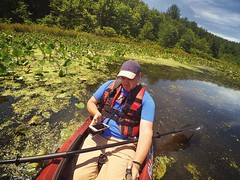 Kayak selfie, 2016.06.20 (Aaron Glenn Campbell) Tags: statepark summer nature kayak pennsylvania squareformat nepa actioncam luzernecounty kingstontownship francesslocum oldtowncanoe meetthemoment johnsonoutdoors instagramapp uploaded:by=instagram xiaomiyi optoutside heron9xt