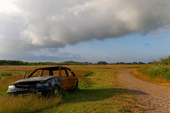 Are you the road or the car? (Metalhund) Tags: road nature car denmark goldenlight sjlland